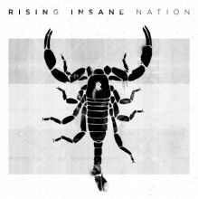 Rising Insane - Nation, Cover